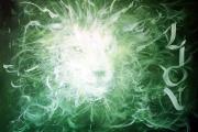 peint-lionbis
